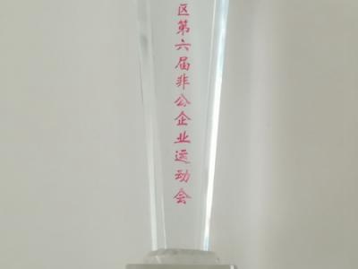 大兴区第六届非公企业运动会(羽毛球女子单打亚军)
