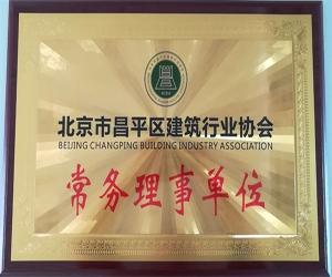 北京市昌平区建筑行业协会常务理事单位